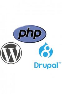 Bana Drupal ve PHP konusunda danışabilirsiniz.