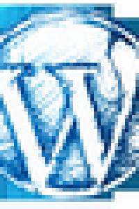 Wordpress ile site kurma, SEO danışmanlığı, Adwords reklam verme hakkında